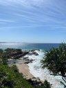 Maya Kamenetsky